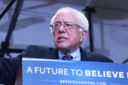 Bernie Sanders Democrat presidential candidate 2016